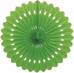Диск Зеленый 41 см