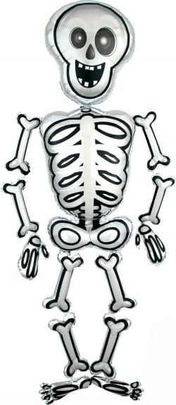 Ходячий шар Скелет Мистер Скелли