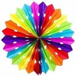 Диск Разноцветный 30 см