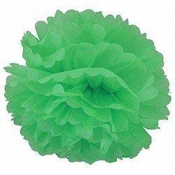 Помпон Зеленый 20 см